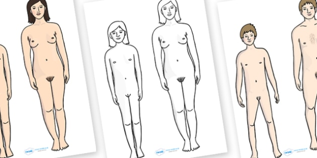 How Your Body Changes During Puberty Discussion Aid Pictures - changes, the human body, our bodies, how the body changes, puberty, growing, growth, ks2