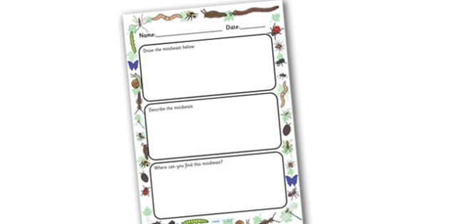 Minibeast Description Writing Frame - writing frame, frame, writing, writing aid, minibeasts, minibeast writing frames, minibeast description activity, minibeast frame, writing template, template, literacy, reading and writing