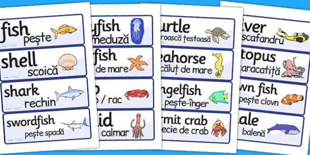 Under the Sea Word Cards Romanian Translation - romanian, sea