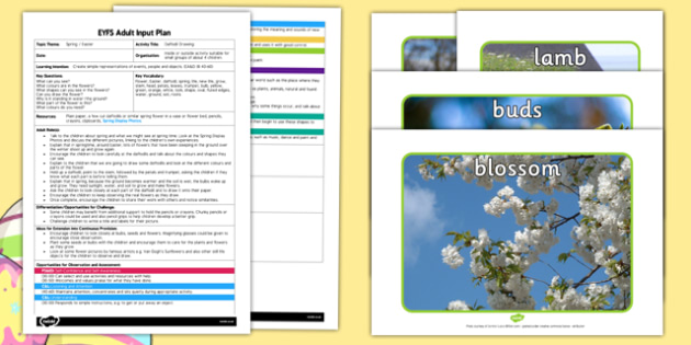 Daffodil Drawing EYFS Adult Input Plan and Resource Pack - spring, flowers
