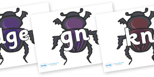 Silent Letters on Egyptian Beetles (Scarab) - Silent Letters, silent letter, letter blend, consonant, consonants, digraph, trigraph, A-Z letters, literacy, alphabet, letters, alternative sounds