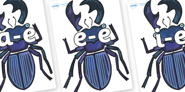 Modifying E Letters on Stag Beetle to Support Teaching on The Bad Tempered Ladybird - Modifying E, letters, modify, Phase 5, Phase five, alternative spellings for phonemes, DfES letters and Sounds