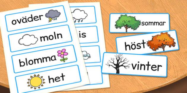 Swedish Seasons Word Cards - swedish, seasons, word cards, cards