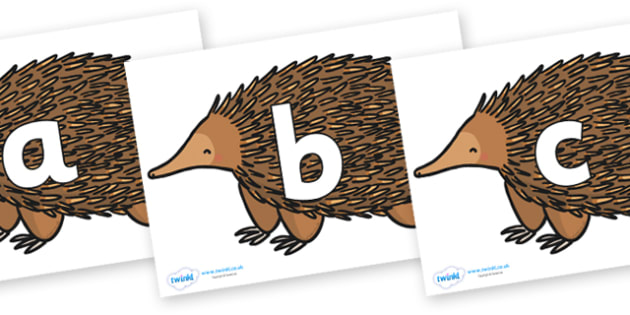 Phoneme Set on Echidna - Phoneme set, phonemes, phoneme, Letters and Sounds, DfES, display, Phase 1, Phase 2, Phase 3, Phase 5, Foundation, Literacy