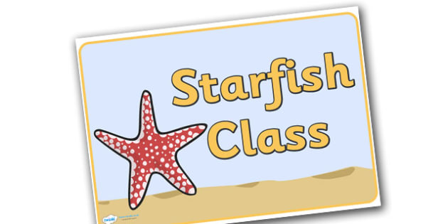 Starfish Display Posters - starfish, animal, fish, sea, under the sea, display, poster sign, pretty, small, star