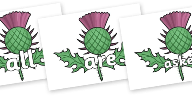 Tricky Words on Scottish Thistles - Tricky words, DfES Letters and Sounds, Letters and sounds, display, words