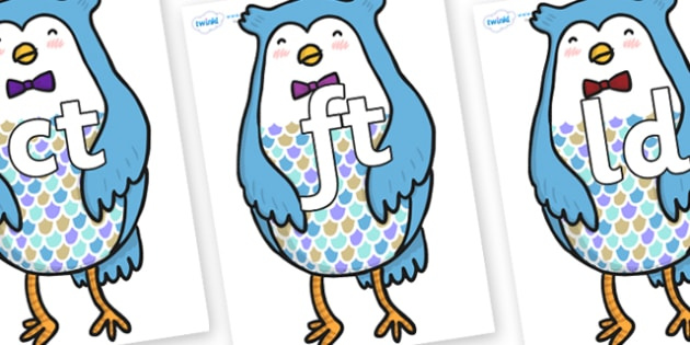 Final Letter Blends on Owl - Final Letters, final letter, letter blend, letter blends, consonant, consonants, digraph, trigraph, literacy, alphabet, letters, foundation stage literacy