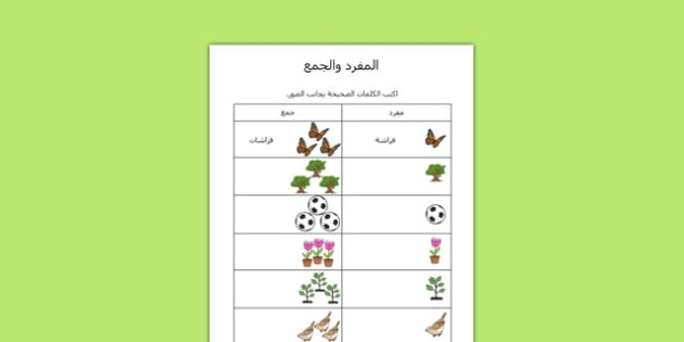 Garden Singular Plural Worksheet Arabic - arabic, garden singular, plural, worksheet