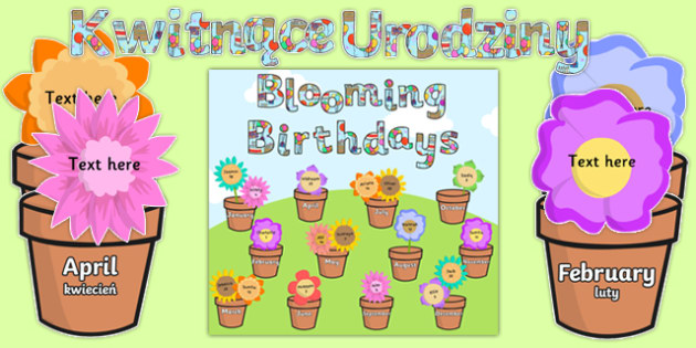 Blooming Birthdays Flower Display Pack Polish Translation - birthdays, display, pack
