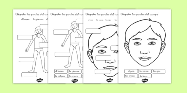 Ficha Etiqueta las partes del cuerpo - cuerpo