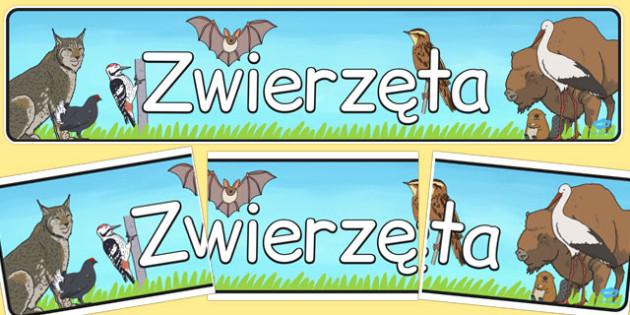 Bannner na gazetke scienna Zwierzeta po polsku - szkola , Polish