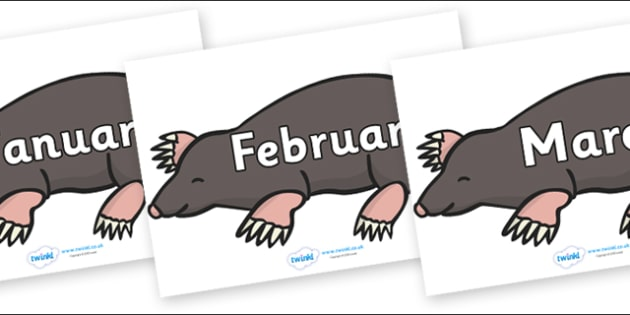 Months of the Year on Moles - Months of the Year, Months poster, Months display, display, poster, frieze, Months, month, January, February, March, April, May, June, July, August, September