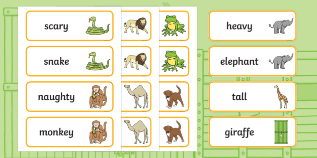 Word Cards to Support Teaching on Dear Zoo - cher zoo, Dear Zoo, Rod Campbell story, zoo, zoo animals, adjectives, descriptive words, lion, monkey, puppy, giraffe, story book, story book resources, story sequencing, story resources, zoo, animals, Wor