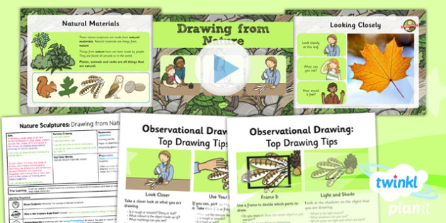 Art: Nature Sculptures: Drawing from Nature KS1 Lesson Pack 2