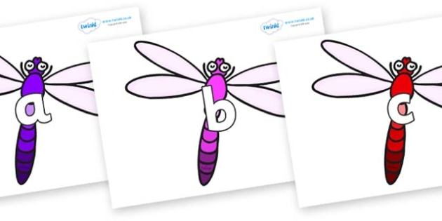 Phase 2 Phonemes on Dragonflies - Phonemes, phoneme, Phase 2, Phase two, Foundation, Literacy, Letters and Sounds, DfES, display