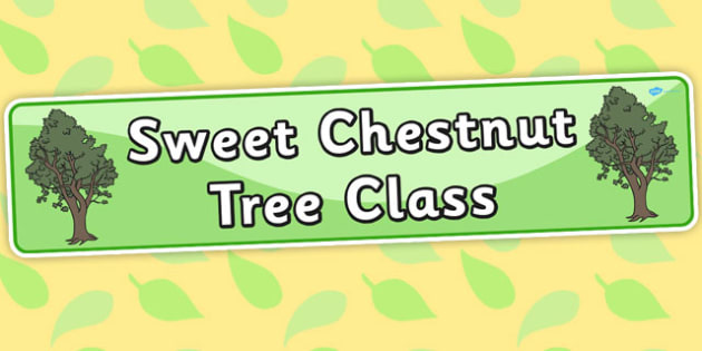 Sweet Chestnut Tree Themed Classroom Display Banner - plants
