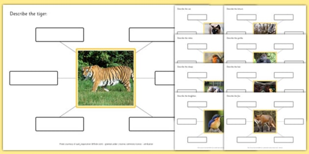 Photo Describe The Picture Animals - photo, describe, picture, animal