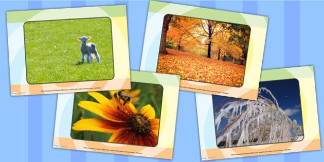 Four Seasons Display Photos - seasons, weather, display photos