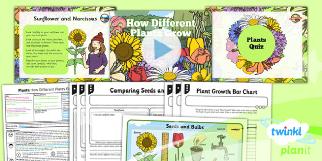 Science: Plants: How Different Plants Grow Year 2 Lesson Pack 6