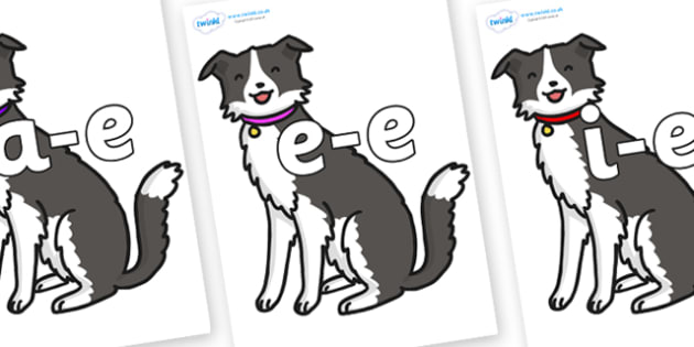 Modifying E Letters on Dog - Modifying E, letters, modify, Phase 5, Phase five, alternative spellings for phonemes, DfES letters and Sounds