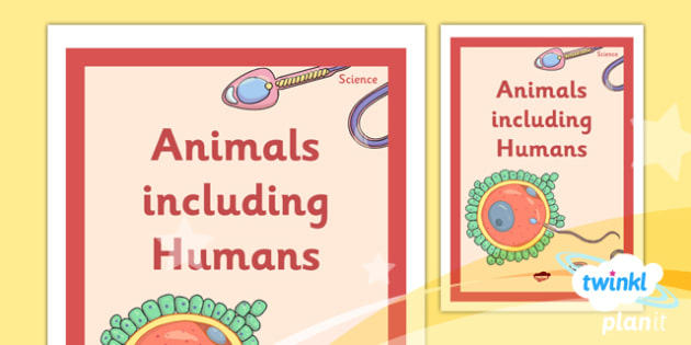 Science: Animals Including Humans Year 5 Unit Book Cover