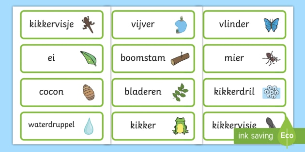Life Cycle Word Cards - life cycles, lifecycle, visual aid, words - Dutch