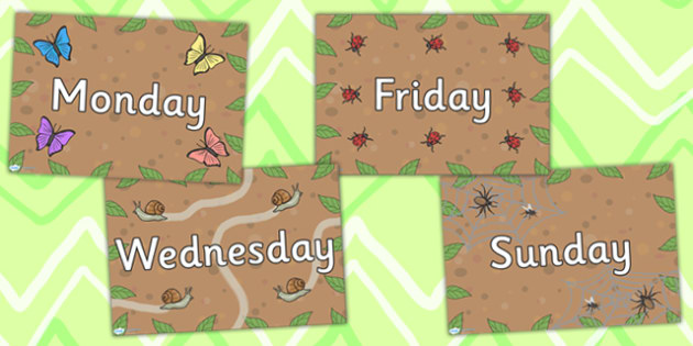 Minibeast Themed Days of the Week Posters - classroom display