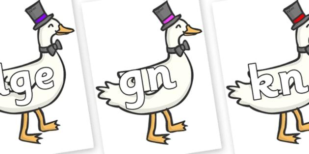 Silent Letters on Goose - Silent Letters, silent letter, letter blend, consonant, consonants, digraph, trigraph, A-Z letters, literacy, alphabet, letters, alternative sounds