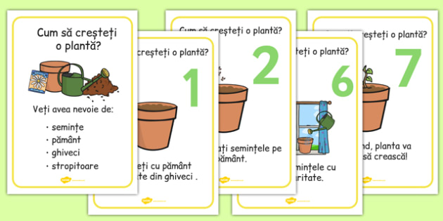 Cum să crești o plantă - Planșe