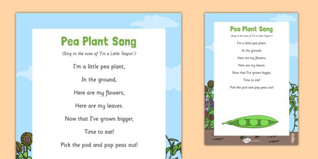 Pea Plants Song