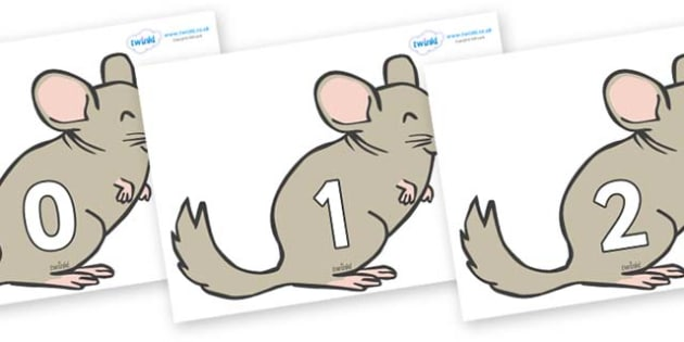 Numbers 0-100 on Chinchillas - 0-100, foundation stage numeracy, Number recognition, Number flashcards, counting, number frieze, Display numbers, number posters
