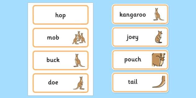 Kangaroo Life Cycle Word Cards - lifecycle, cycles, visual aid