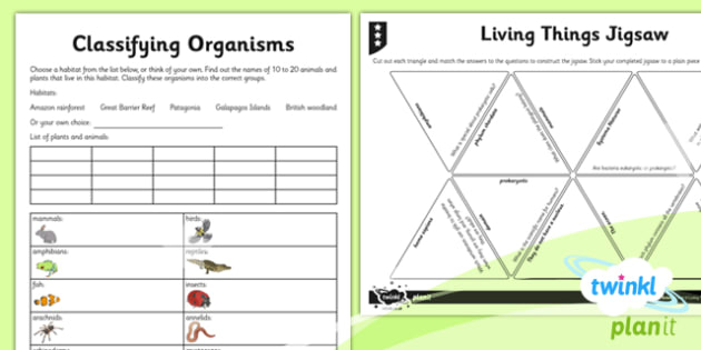 Science: Living Things and Their Habitats Year 6 Home Learning Tasks