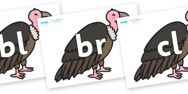 Initial Letter Blends on Vultures - Initial Letters, initial letter, letter blend, letter blends, consonant, consonants, digraph, trigraph, literacy, alphabet, letters, foundation stage literacy