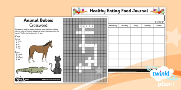 Science: Animals Including Humans Year 2 Home Learning Tasks
