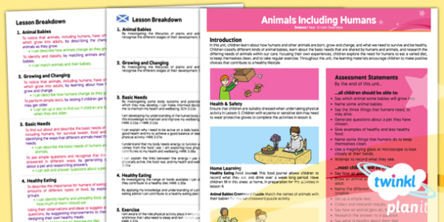 Science: Animals Including Humans Year 2 Planning Overview CfE