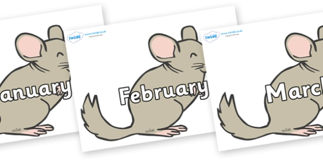 Months of the Year on Chinchillas - Months of the Year, Months poster, Months display, display, poster, frieze, Months, month, January, February, March, April, May, June, July, August, September