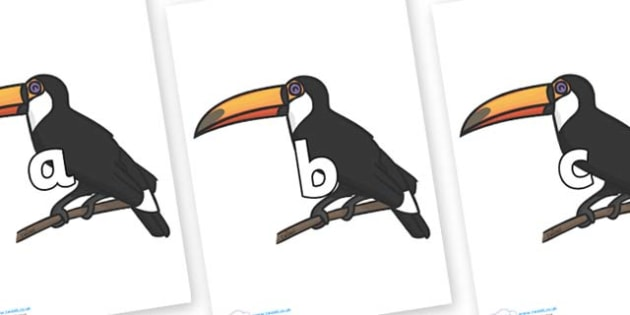 Phase 2 Phonemes on Toucan - Phonemes, phoneme, Phase 2, Phase two, Foundation, Literacy, Letters and Sounds, DfES, display