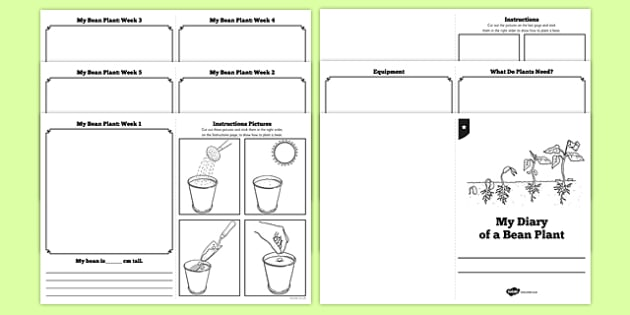 My Diary of a Bean Plant Booklet Template - Bean, growth, plant, life cycle, lifecycle, diary, worksbook, worksheet, plant growth, beans, garden, Topic, Foundation stage, knowledge and understanding of the world, investigation