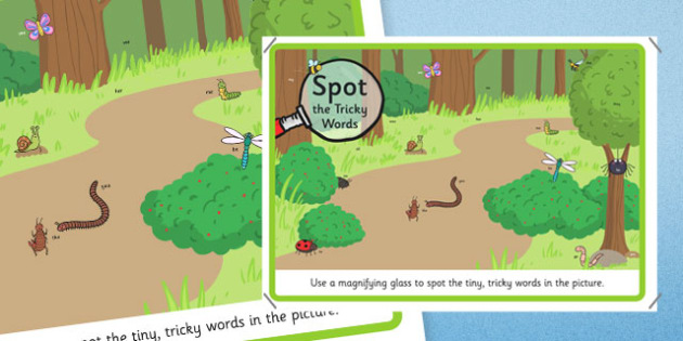 Phase 2 Tricky Words Magnifying Glass Activity Minibeasts Scene Poster - phase 3,Phase 2, tricky words, magnifying glass, activity, minibeasts, scene, poster, worksheet