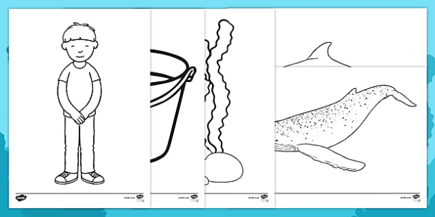 Sea Bucket Colouring Sheets - billy's bucket, sea bucket, colouring sheets, colour, story book, story, book