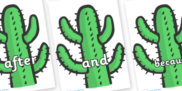 Connectives on Cactus - Connectives, VCOP, connective resources, connectives display words, connective displays
