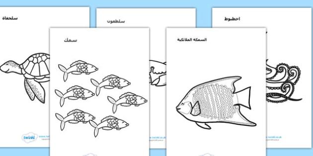 ملصقات تلوين عن تحت البحر عربي