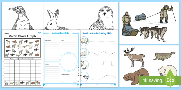 Top Ten The Arctic  Activity Pack - The Arctic, Polar Regions, north pole, south pole, explorers,Australia