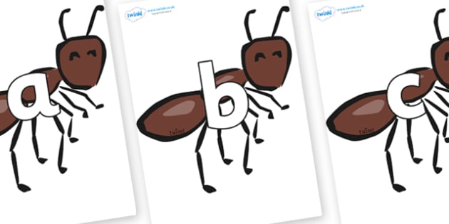 Phoneme Set on Ants - Phoneme set, phonemes, phoneme, Letters and Sounds, DfES, display, Phase 1, Phase 2, Phase 3, Phase 5, Foundation, Literacy