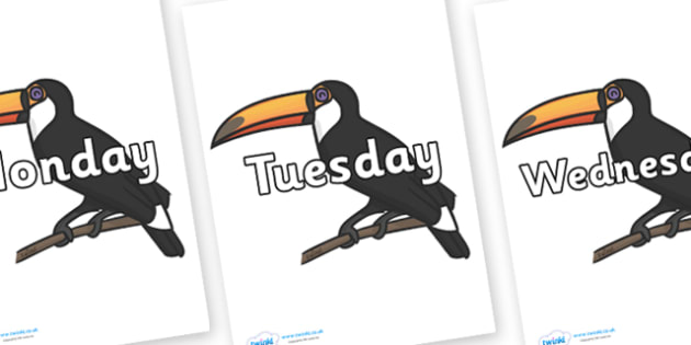 Days of the Week on Toucans - Days of the Week, Weeks poster, week, display, poster, frieze, Days, Day, Monday, Tuesday, Wednesday, Thursday, Friday, Saturday, Sunday