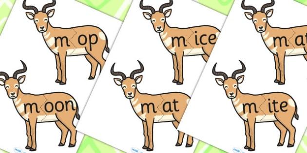m Sound And Vowel Animal Jigsaw - sounds, vowels, jigsaw, animals
