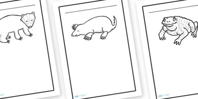 British Wildlife Writing Frames - writing frame, frame, writing, british wildlife, wilfelife, britain, animals in britain, british animals, animals writing frames, wildlife writing frames, writing aid, writing template, template, literacy
