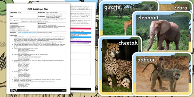 We're Going on Safari EYFS Adult Input Plan and Resource Pack