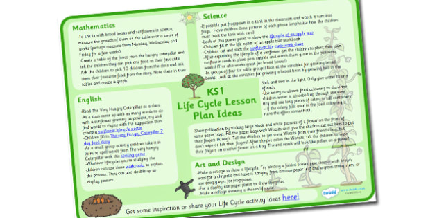Australia Life Cycle Lesson Plan Ideas KS1 -
